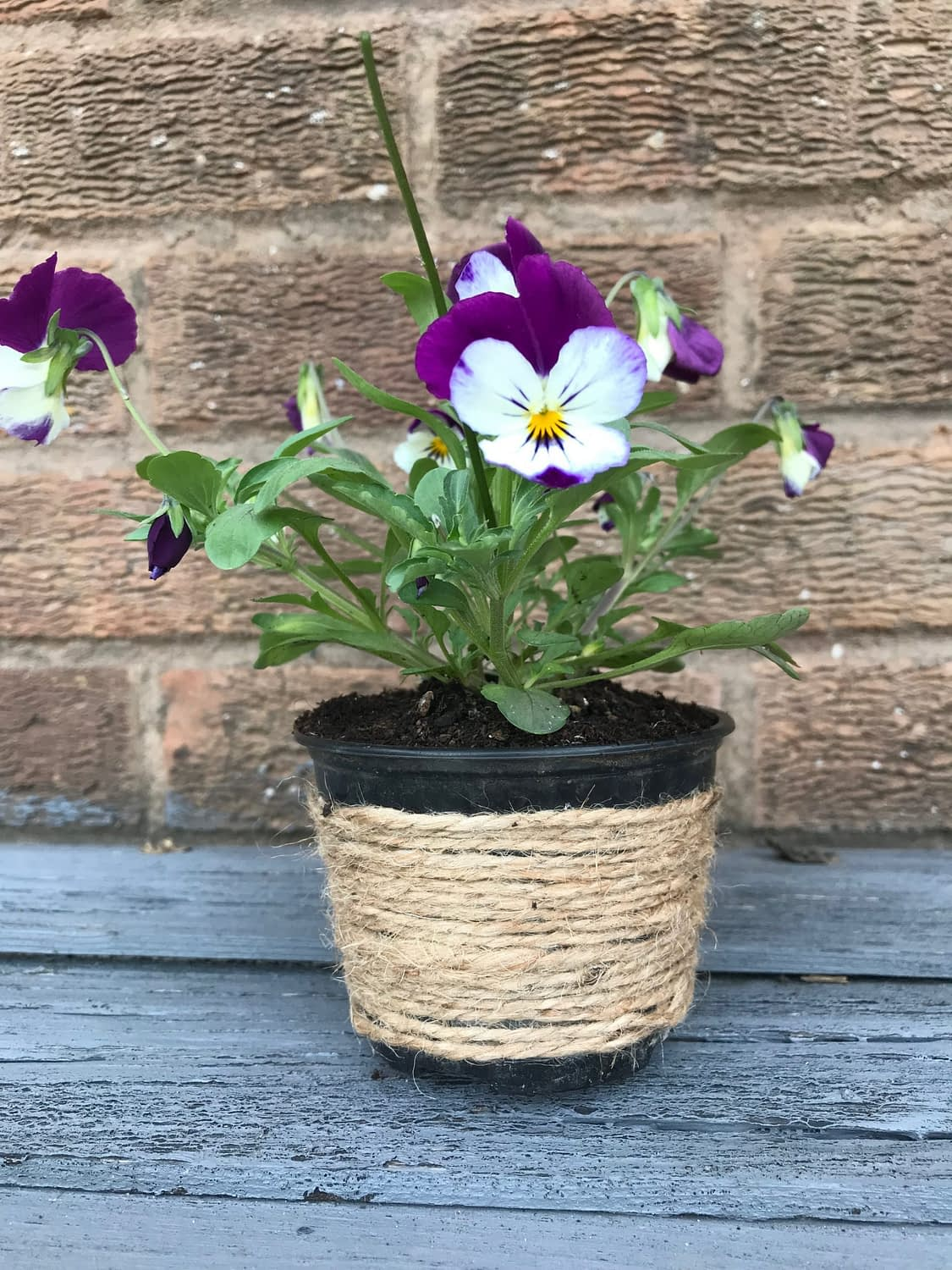 Plastic plant pot decorated with string
